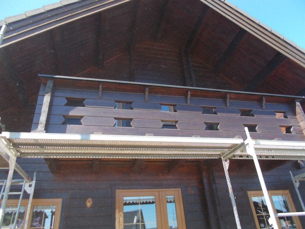 Trockeneisstrahlen Holzhaus 1